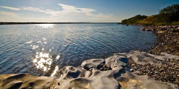 Hodbarrow Nature Reserve