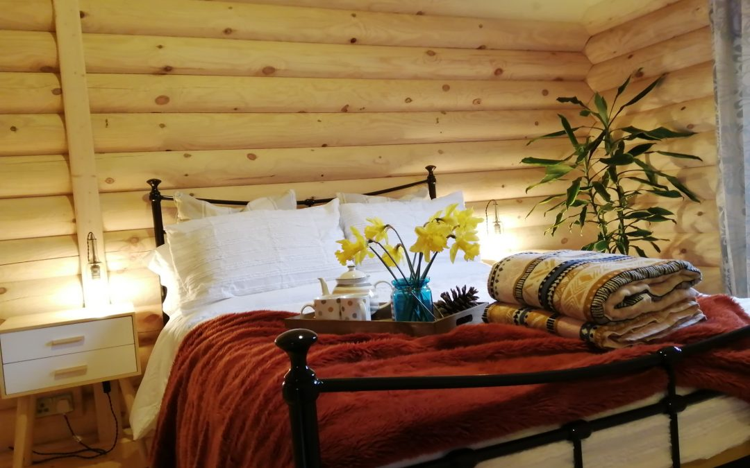 Ravenglass Log Cabin